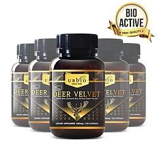 [유비바이오] 바이오액티브 녹용(발효녹용) 500mg 120캡슐 6개
