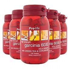[프로라이프] 가르시니아 6000 100정 6개