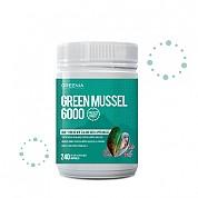 [그리니아] 그린머슬 6000 / 100% 뉴질랜드 초록입홍합 240 캡슐 1개